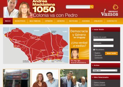 Sitio web para agrupación política